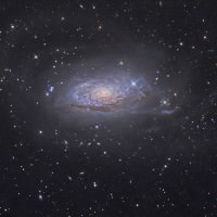 Sunflower Galaxy